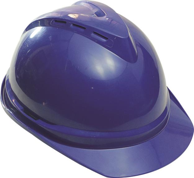 图片 Lotus Hard Hat W/Hole (ANSI)