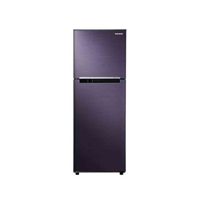 Picture of Refrigerator RT22FARBDUT