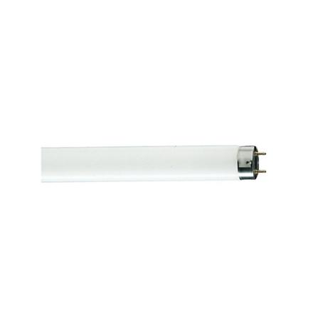 图片 Linear Fluorescent Lamps
