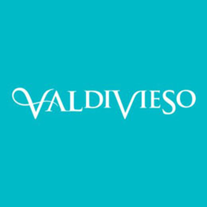 制造商图片 Valdivieso