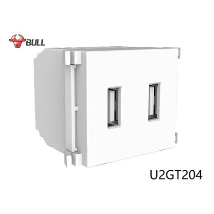 图片 Bull 2 Gang USB Outlet (White), U2GT204