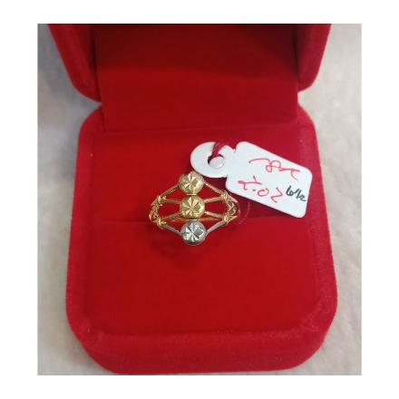 图片 18K - Saudi Gold Ring - SR2.02G-6 1/2
