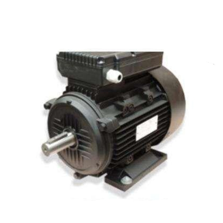 Picture of Electric Motor Single Phase DL Series DLYL802-4