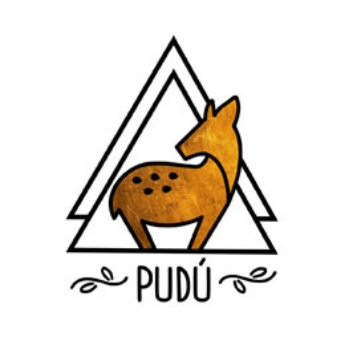 Picture for manufacturer Pudu