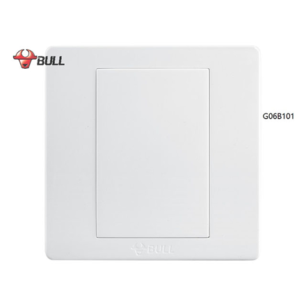 圖片 Bull Blank Plate (White), G06B101