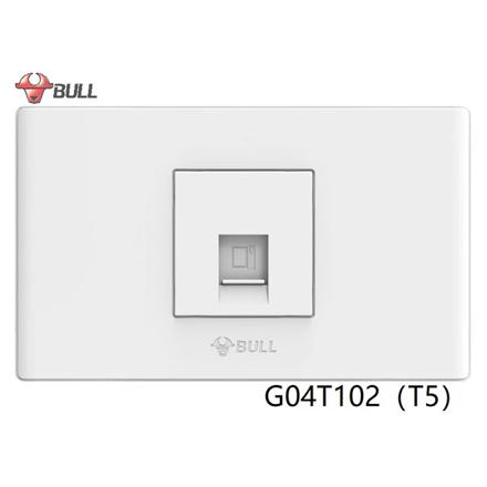 圖片 Bull 1 Gang Computer Modular Outlet Set (White), G04T102(T5)